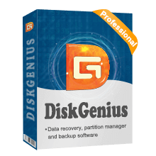 DiskGenius Professional 5.4.2 Crack With Licence Key Free Download