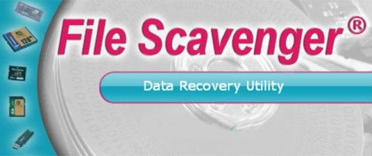 File Scavenger 6.1 Crack-License Key Free Download