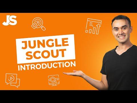 Jungle Scout Pro 4.3.1 Crack-Product Key Free ...